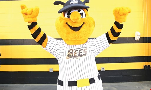 Product image for New Britain Bees $11 For 2 Field Box Tickets For 2019-2020 Season (Reg. $22)