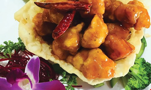 Product image for Sky Asian Cuisine $15 For $30 Worth Of Asian Cuisine