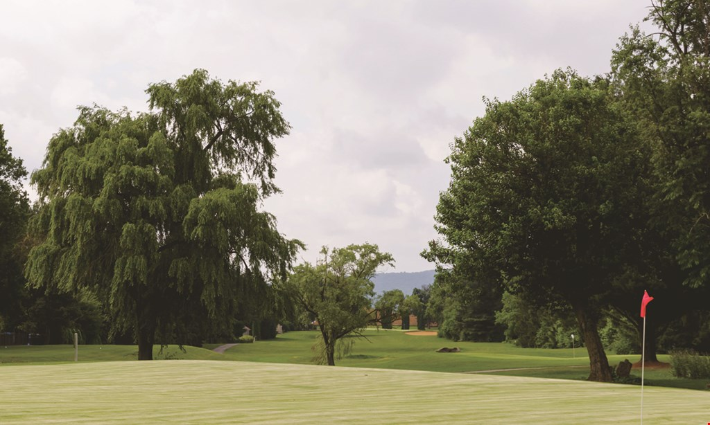 Product image for Shepherd Hills Golf Club $94 For 18 Holes Of Golf Including Carts For 4 (Reg. $188)