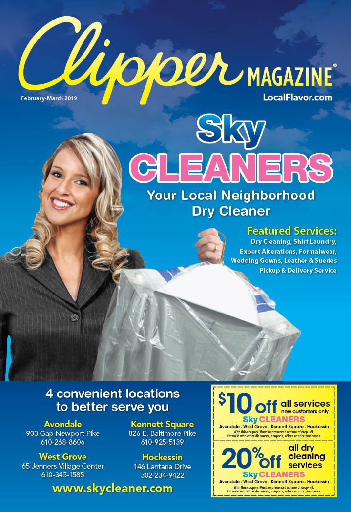 blue sky cleaners coupons