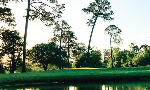 Product image for Pinewood Golf Club $40 For 18 Holes Of Golf For 2 People Including Cart (Reg. $80)