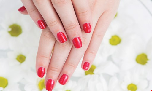 Product image for JJ Angelina's - Nails by Staci $30 for $60 worth of Spa Manicure and Pedicure Services