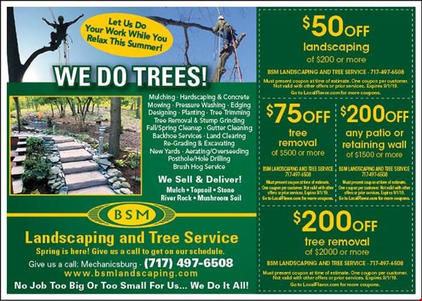 LocalFlavor com - BSM Landscaping Coupons