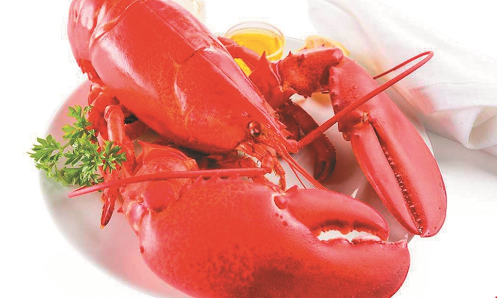 Product image for Lulu's The Lobster & Wing Shack $15 For $30 Worth Of Casual Dining