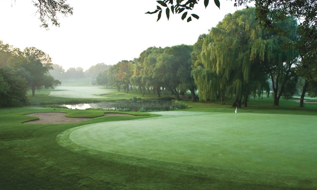 Product image for Brown Deer Golf Course $192 For 18 Holes Of Golf For 4 With Cart (Reg. $384)