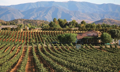 Product image for Reyes Winery $15 For A Wine Tasting Flight Of 7 Wines For 2 People Including Wine Glass (Reg. $30)