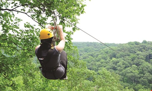 Product image for Ozone Zipline Adventures $65 For A Traditional Tour Zipline For 2 People (Reg. $130)