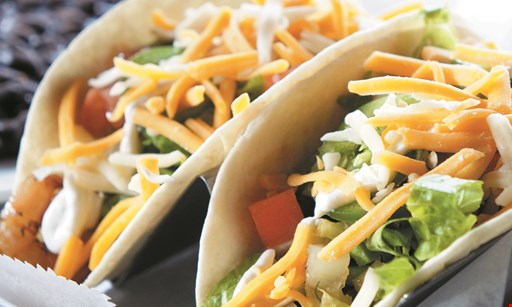 Product image for Taco Yolo $10 For $20 Worth Of Casual Dining