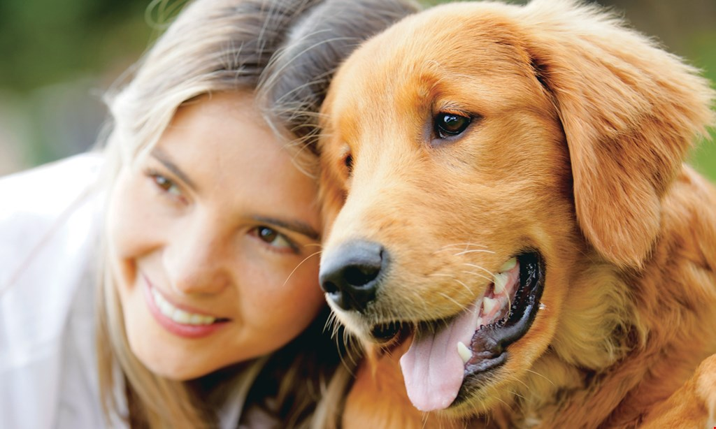 Product image for Hixson Pet Wellness Center $22.50 for a Pet Exam (Reg. $45)