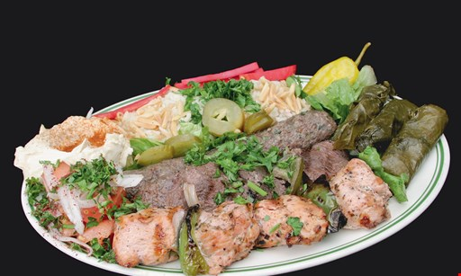 Product image for The Oven $15 For $30 Worth Of Middle Eastern Cuisine