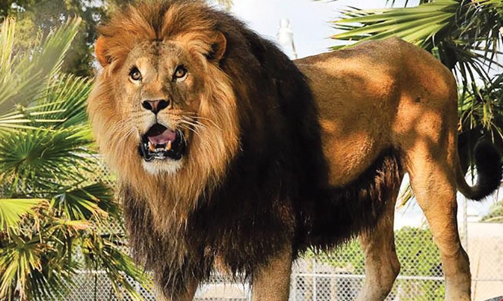 Product image for Big Cat Habitat $20 For 2 Admissions (Reg. $40)