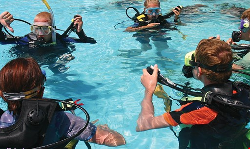 Product image for Spruce Creek Scuba $50 For 2-Hr Try Scuba For 2 People (Reg. $100)