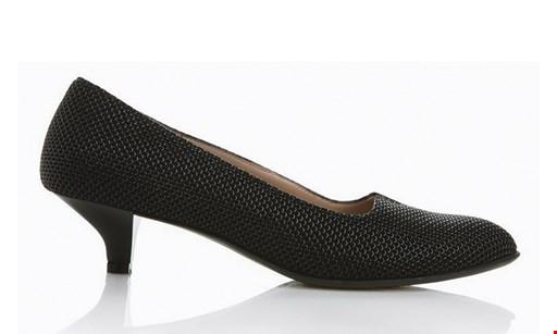 Product image for Van Dyke & Bacon Shoes $50 Toward Mens, Women's & Kids' Shoes (Reg. $100)