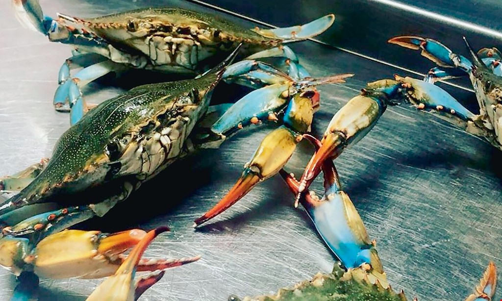 Product image for Crab Fever $15 For $30 Worth Of Seafood Dining