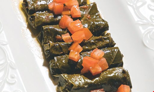 Product image for Zenola $15 For $30 Worth Of Lebanese Cuisine (Also Valid On Take-Out W/Min. Purchase Of $45)