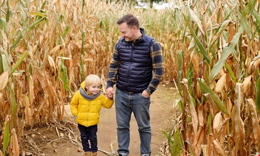 Product image for Maple Lane Farms $18 for 4 Corn Maze Admissions, Family of 4 for the price of 2. ($36 value)