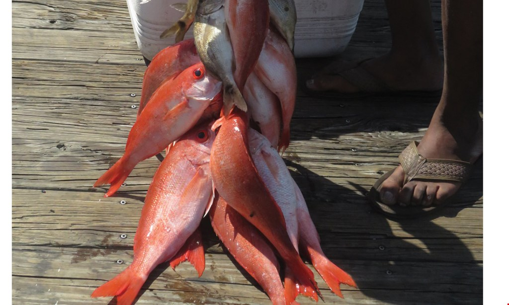 Product image for Sea Love Charters $110 for a full day on a fishing charter for 2 people (Reg. $220)
