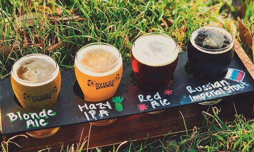 Product image for Oviedo Brewing Company $10 For $20 Worth Of Beer Flights