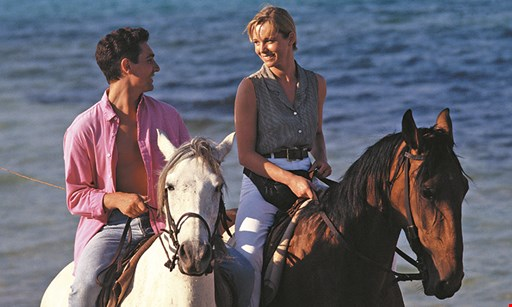 Product image for Rolling Hills Ranch $30 For 2 Hours Of Horseback Riding Or 1 Hour For 2 (Reg. $60)