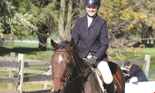 Product image for Spruce Meadow Farm $55 For Private Horseback Riding & Grooming Lesson For 2 (Reg. $160)