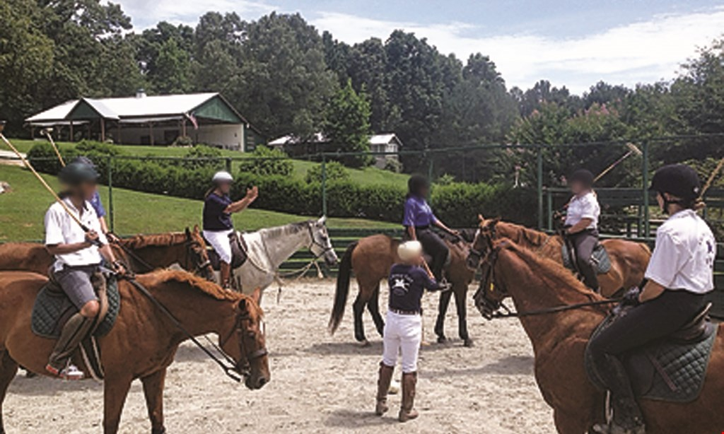 Product image for Chukkar Farm Polo Club $149 For A 2-Hour Introductory Polo Lesson Package For 2 (Reg. $300)