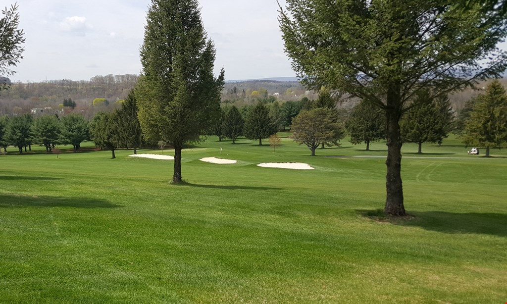 Product image for Sawmill Golf Course $60 For Greens Fees For A Round Of Golf For 4 (Reg. $120)