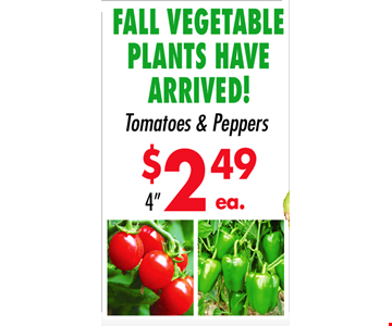 Fall Vegetable Plants have Arrived! Tomatoes & Peppers 4
