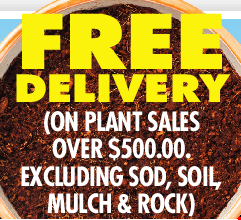 FREE DELIVERY! (ON PLANT SALES OVER $500.00.  EXCLUDING SOD, SOIL, MULCH & ROCK)