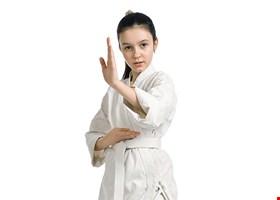 Frank Family Karate