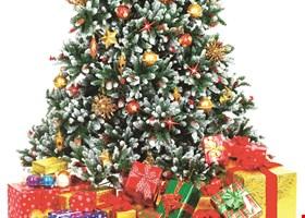 Treetime Christmas Creations - Artificial Christmas Trees