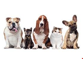 McCraken's Pet Food & Supply