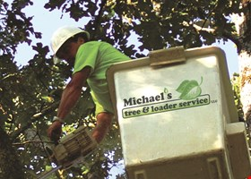 Michael's Tree and Loader Service LLC