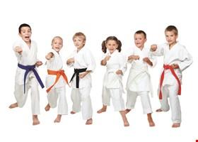Delaware Jiu-Jitsu, LLC