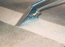 Carpet Care & Beyond
