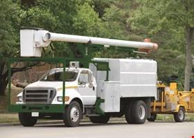 Millenium Tree Service Inc.