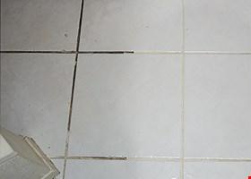 Xtraordinary Carpet Care