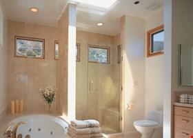 Legacy Shower Door