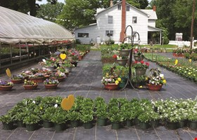 Yoder's Greenhouse