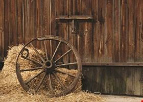 Atascadero Hay and Feed