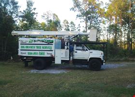 Big Branch Tree Service
