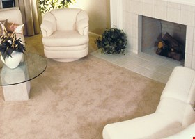 Magna-Dry Carpet Cleaning Co.