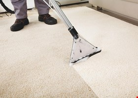 Modernistic Carpet Cleaning