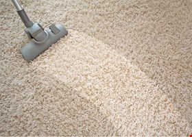 The Professional Robert Hurley Carpet Cleaning