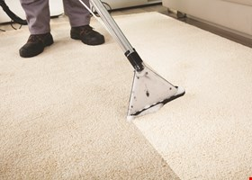 L & N Carpet Cleaning