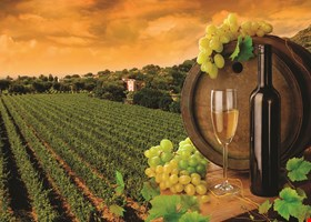 Mohegan Wines & Liquors