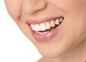 Healthy Dental-Windsor Mill
