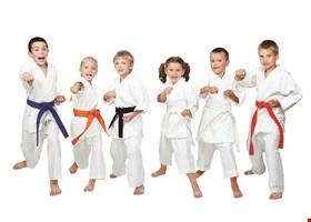 All Star Martial Arts
