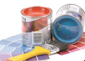 Mark Zayleskie's Painting Services