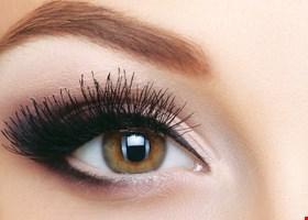Eyebrow & Beyond