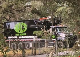 Macs Tree Service